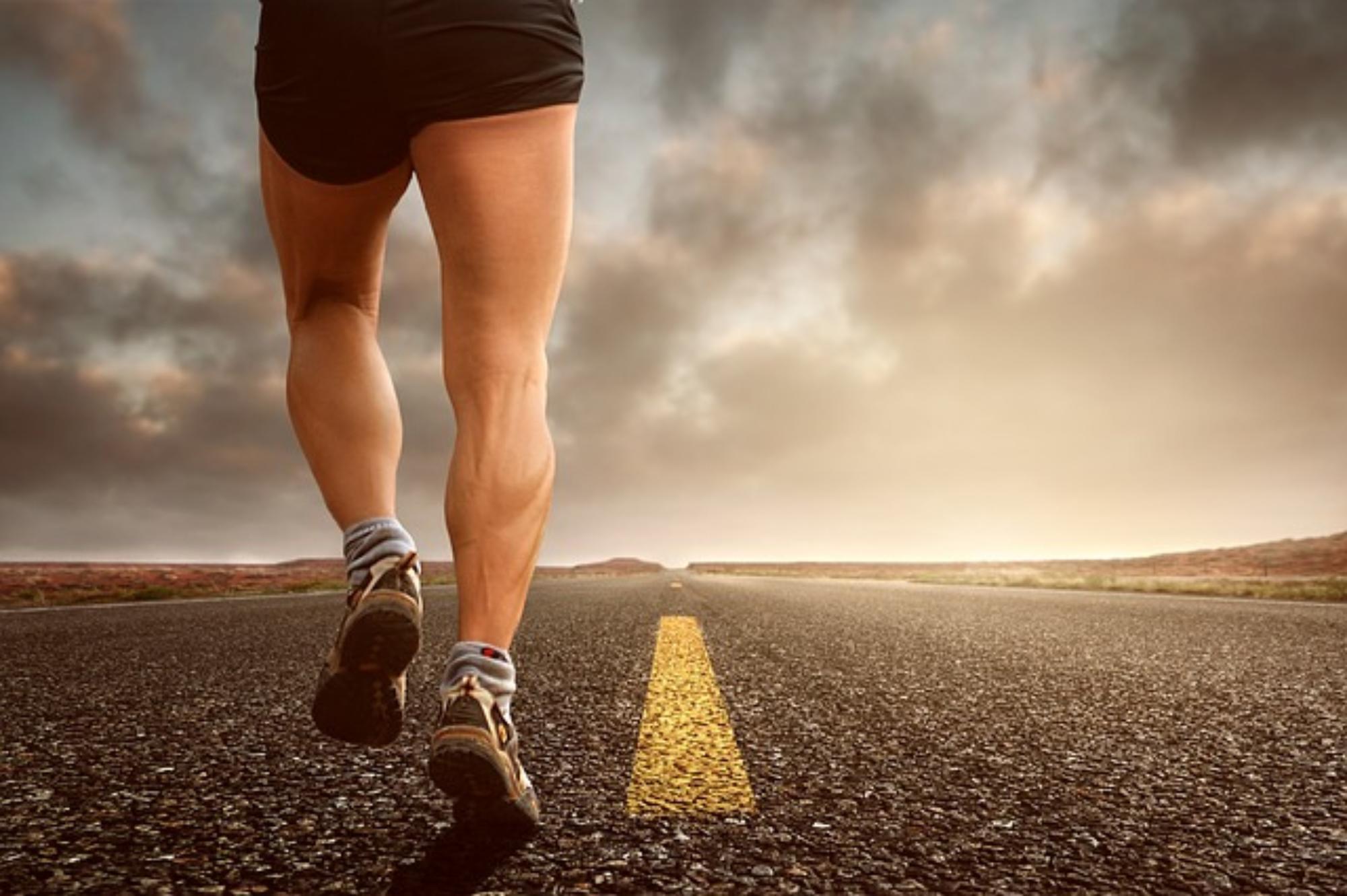 Trening nóg w siłowni